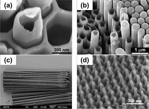 单通AAO模板制备的一维有机物纳米材料