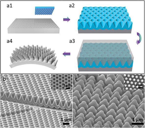 AAO模板制备镀金的图案化PDMS纳米薄膜的SEM图